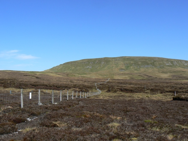 Approaching Mickle Fell from the south via the county boundary fence