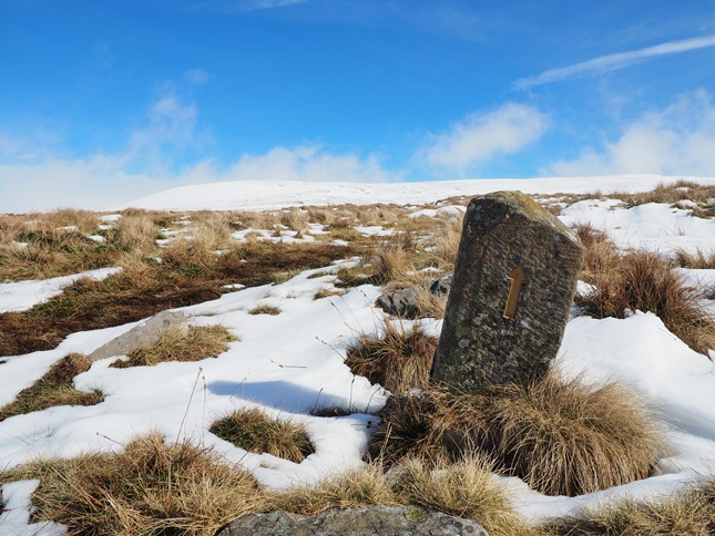 One of the small stone Pennine Way markers on the upper reaches of Knock Fell