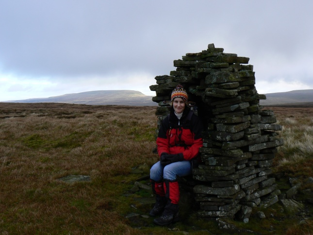 My wife sat on the seat like currick on the north top of Murton Fell