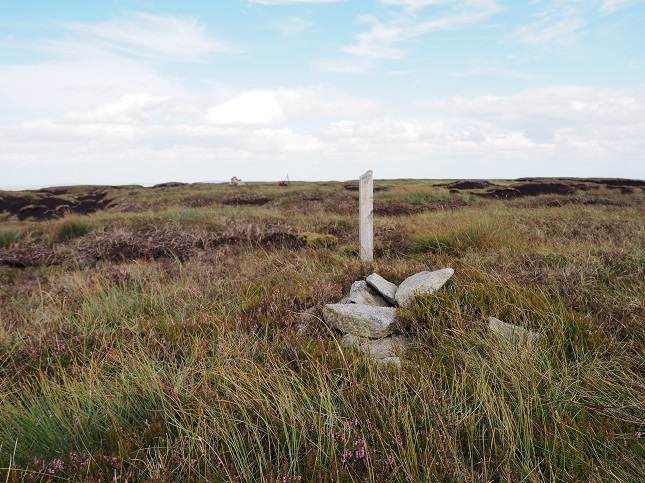 The small pile of stones and wooden stake marking the highest point.