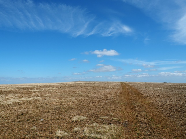 The path leading to the cairn across the grassy summit of Mickle Fell