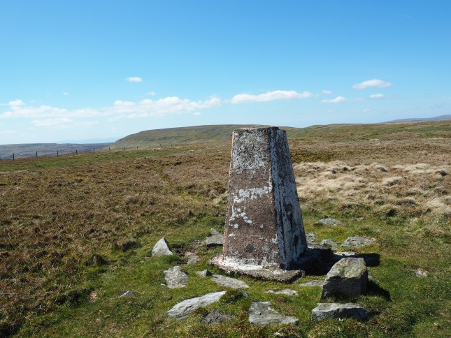 The Mickle Fell trig point is found almost a mile and a half to the east of the summit