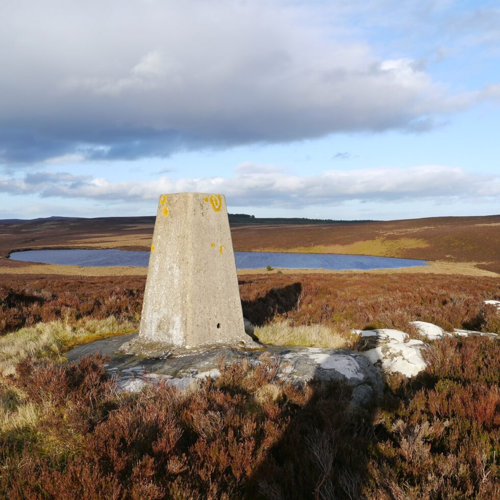 Darden Pike Trig Point