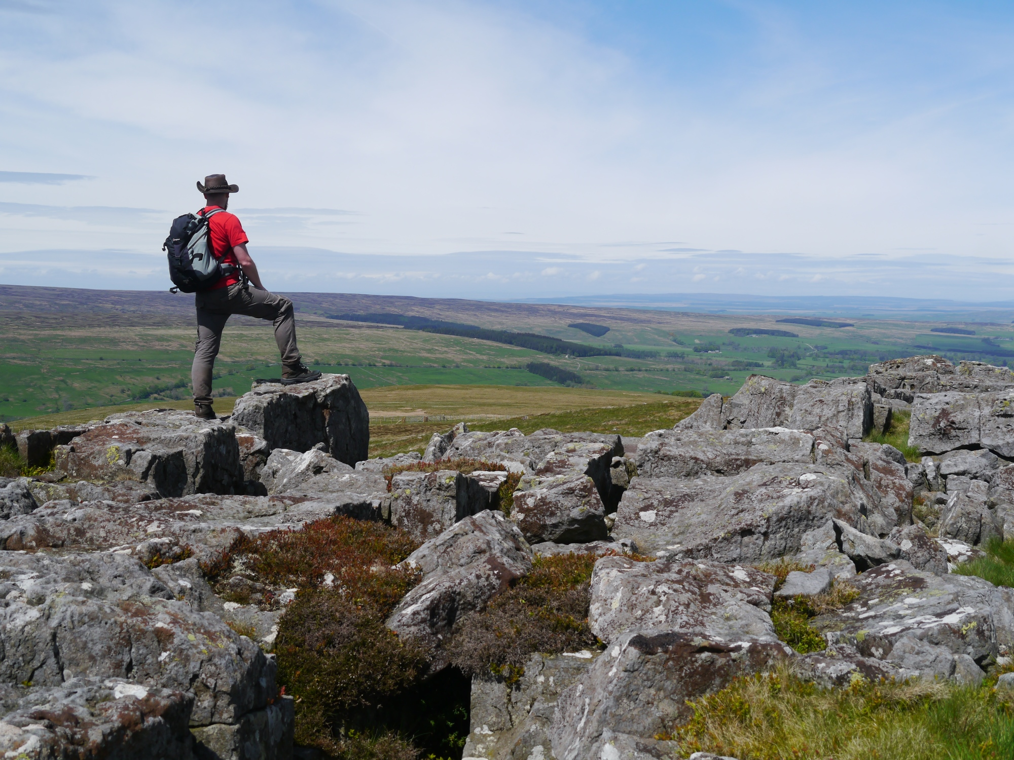 On Greenleycleugh Crags, Brownley Hill