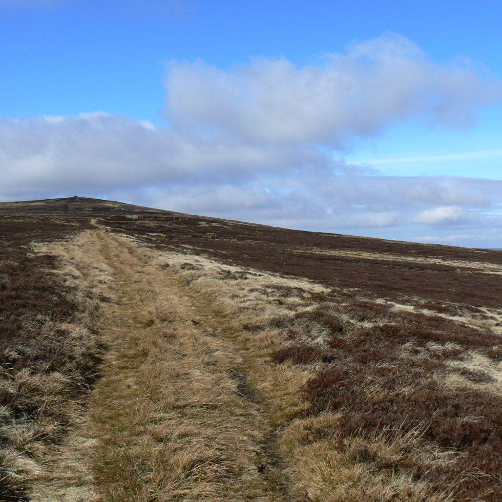 Killhope Law