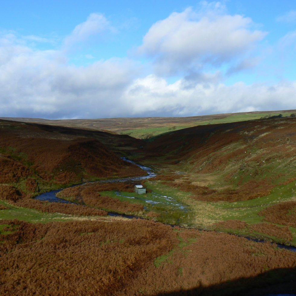 The valley of Stanhope Burn