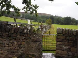 The gate leaving Stanhope behind for Shittlehope Burn