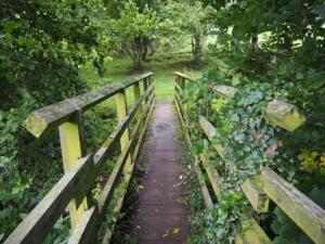 The footbridge over Shittlehope Burn