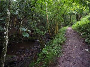 The path following Shittlehope Burn upstream