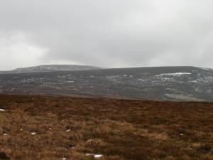 Mickle Fell and Long Crag
