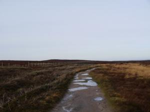 The track heading towards  Warlaw Pike