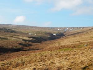 The upper reaches of Bollihope