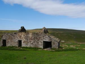 The Dodd from one of the ruined farmhouses on Carrshield Moor