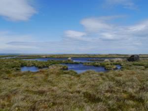 Some of the small tarns on Brownley Hill