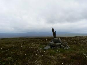 The top of Harwood Common