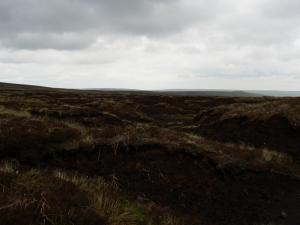 Peat hags between Burnhope Seat and Dead Stones