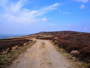 The track leading to the towards the highest point on Cumrew Fell