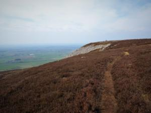 The thin path leading to Cardunneth Pike
