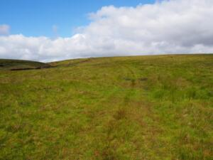 The path heading away from the Pennine Way