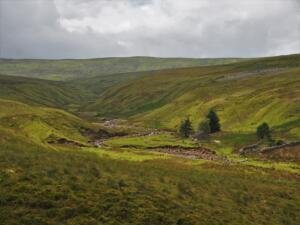 The upper reaches of Black Burn