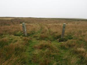 A couple of gateposts with no gate or fence