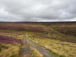 On the much firmer track which would lead almost all the way to the summit of Collier Law