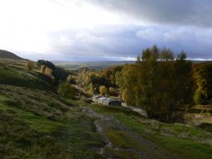 Above some mine workings at Stanhope Burn