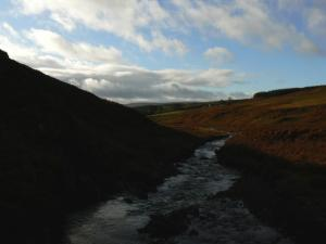 Looking south along Stanhope Burn