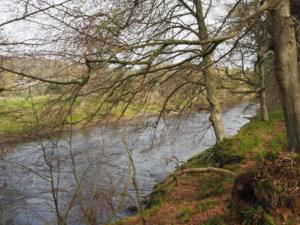 The River Eden