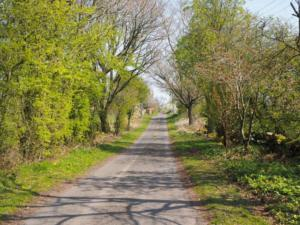 The minor road to Longdales