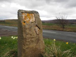 Stone marking the start of the Cambrian Age