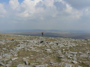 Above the head of Teesdale