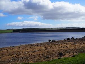 Lots of anglers as we approach the reservoir dam
