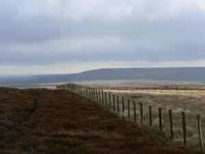 Following the fence to the trig point with Bolt's Law in the distance