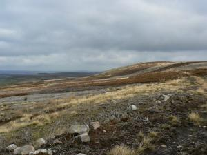 Approaching the top of Bolt's Law
