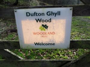 Entering Dufton Ghyll Wood