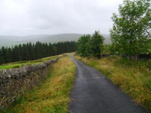The track down to Shieldhill