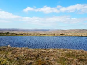 High Field Tarn