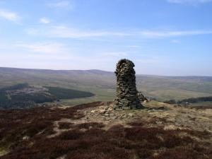 Faw Side Currick looking to Killhope Law