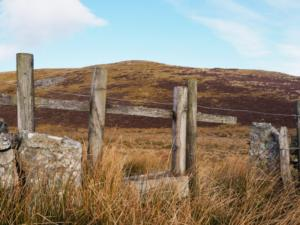 The fence corner where I crossed over on to Little Heaplaw