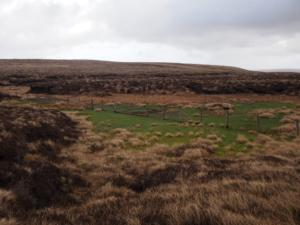 The bog formerly known as Woldgill Tarn