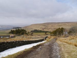 Looking towards Newshield Moss