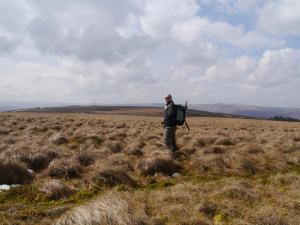Negotiating the tussocks on my way to Newshield Moss