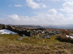 The ruined sheepfold on Newshield Moss