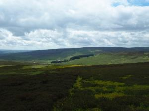 Monk's Moor above Great Eggles Hope