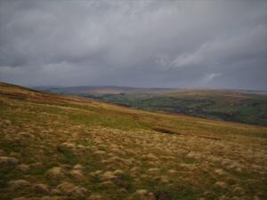 The view up Teesdale