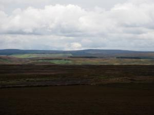 The view towards Bolt's Law