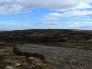 Middlehope Moor from Stang End r