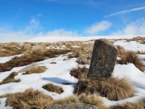 A small Pennine Way marker