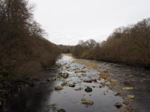 The River South Tyne